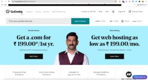 Professional WordPress Website